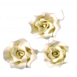 Róże cukrowe ecru