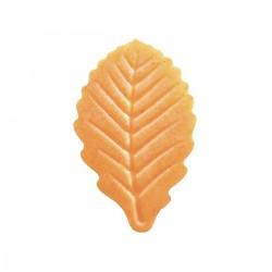 Dekoracja liście pomarańczowe z mango